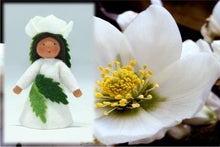 Christmas Rose Fairy | Waldorf Doll Shop | Eco Flower Fairies