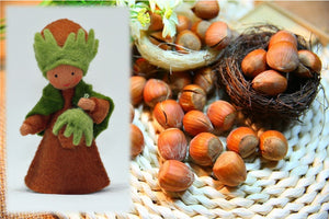 Hazelnut Prince - Eco Flower Fairies, handmade wool felt Waldorf dolls