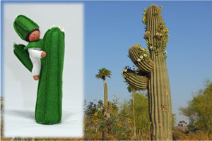 Saguaro Baby | Waldorf Doll Shop | Eco Flower Fairies