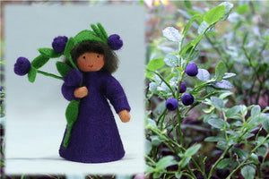 Blueberry Prince | Waldorf Doll Shop | Eco Flower Fairies