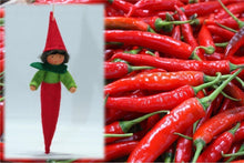 Chili Pepper Kid | Waldorf Doll Shop | Eco Flower Fairies
