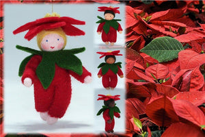 Poinsettia Baby | Waldorf Doll Shop | Eco Flower Fairies