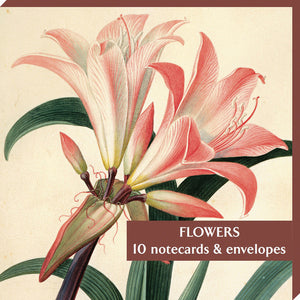 Notecard Wallet SQ 10cm - Flowers Mixed - 10 Pack