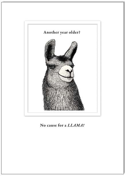 Another Year Older LLAMA