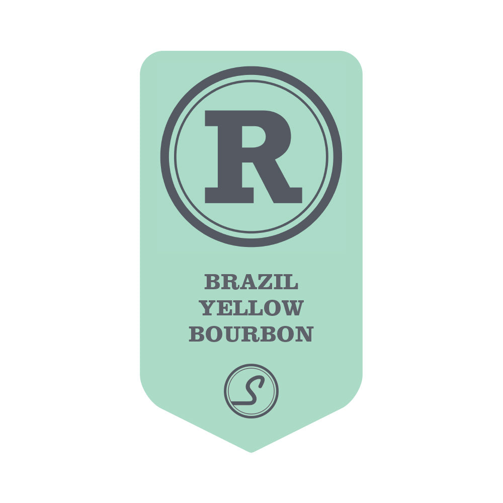 Brazil Yellow Bourbon Rainforest Alliance