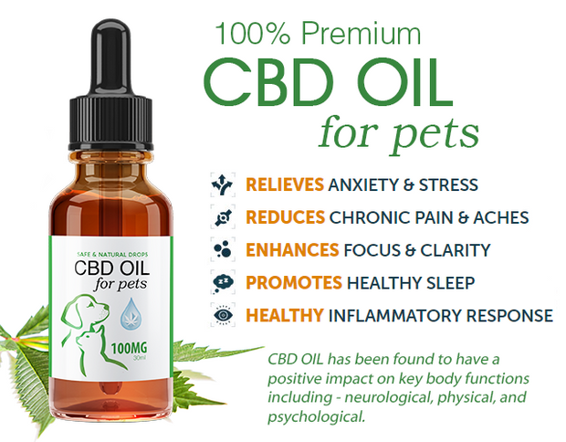 ADVANCED CBD OIL TINCTURE | FOR PETS