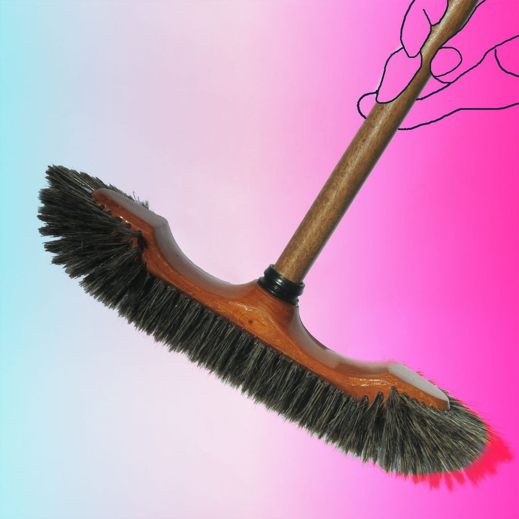 French Broom