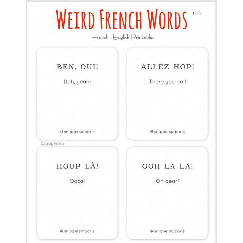Odd French Words - FREE French | English Flashcards - Printable from Ainsi Hardi Paris France