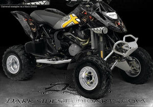 "CAN-AM DS650 GRAPHICS DECALS SET ""THE DEMONS WITHIN"" CARBON FIBER EDITION - Darkside Studio Arts LLC."