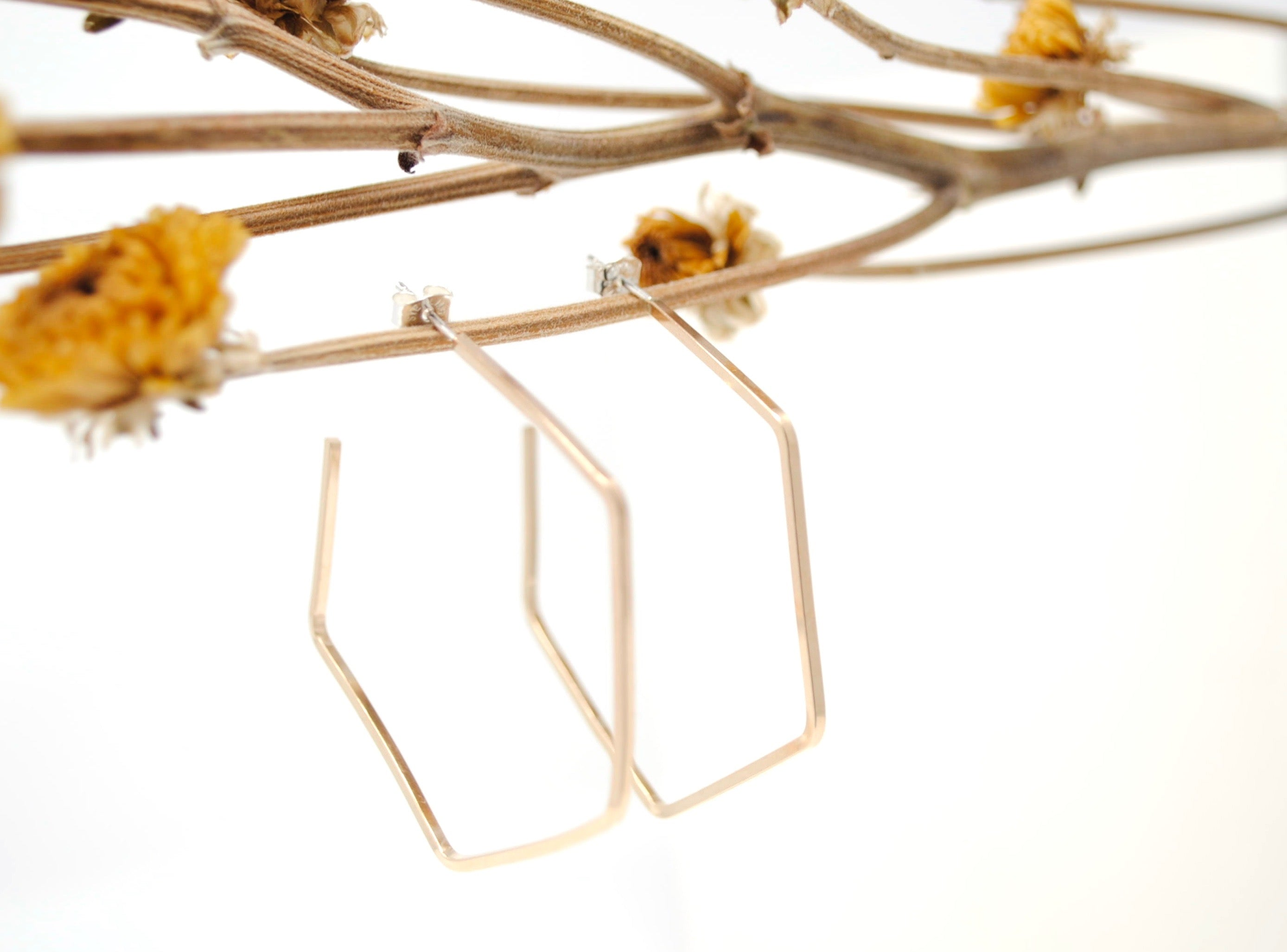 Daedal Hexagon Hoops
