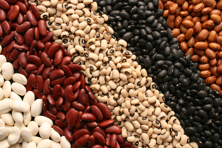 Protein: Why we need it, and where to get it on a vegan diet