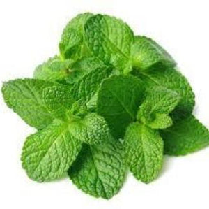 Mint Natural Flavoring