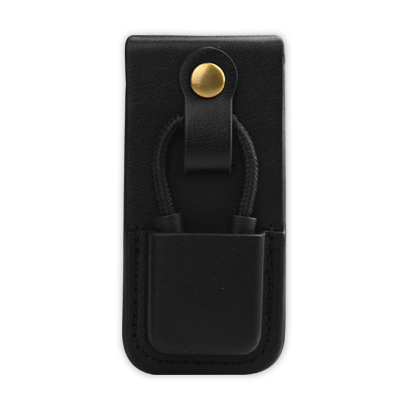 PAW S1 Carrying Case