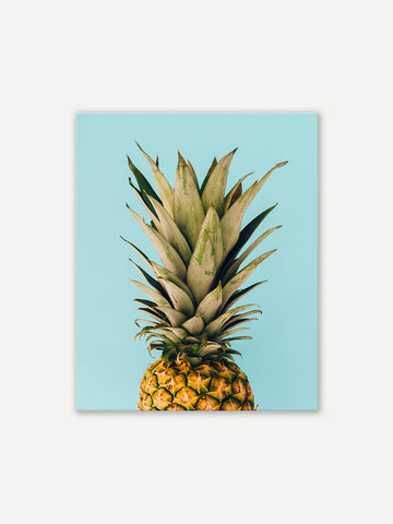 Pineapple Wall Art - Winston Square. Home interior and decor store