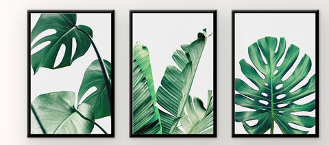 Monstera Wall Art 3PC