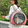 Cat Backpack Carrier Breathable Transparent