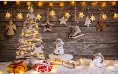 Christmas Party New Year Backgrounds Backdrops