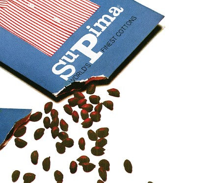 Supima Cotton Seeds