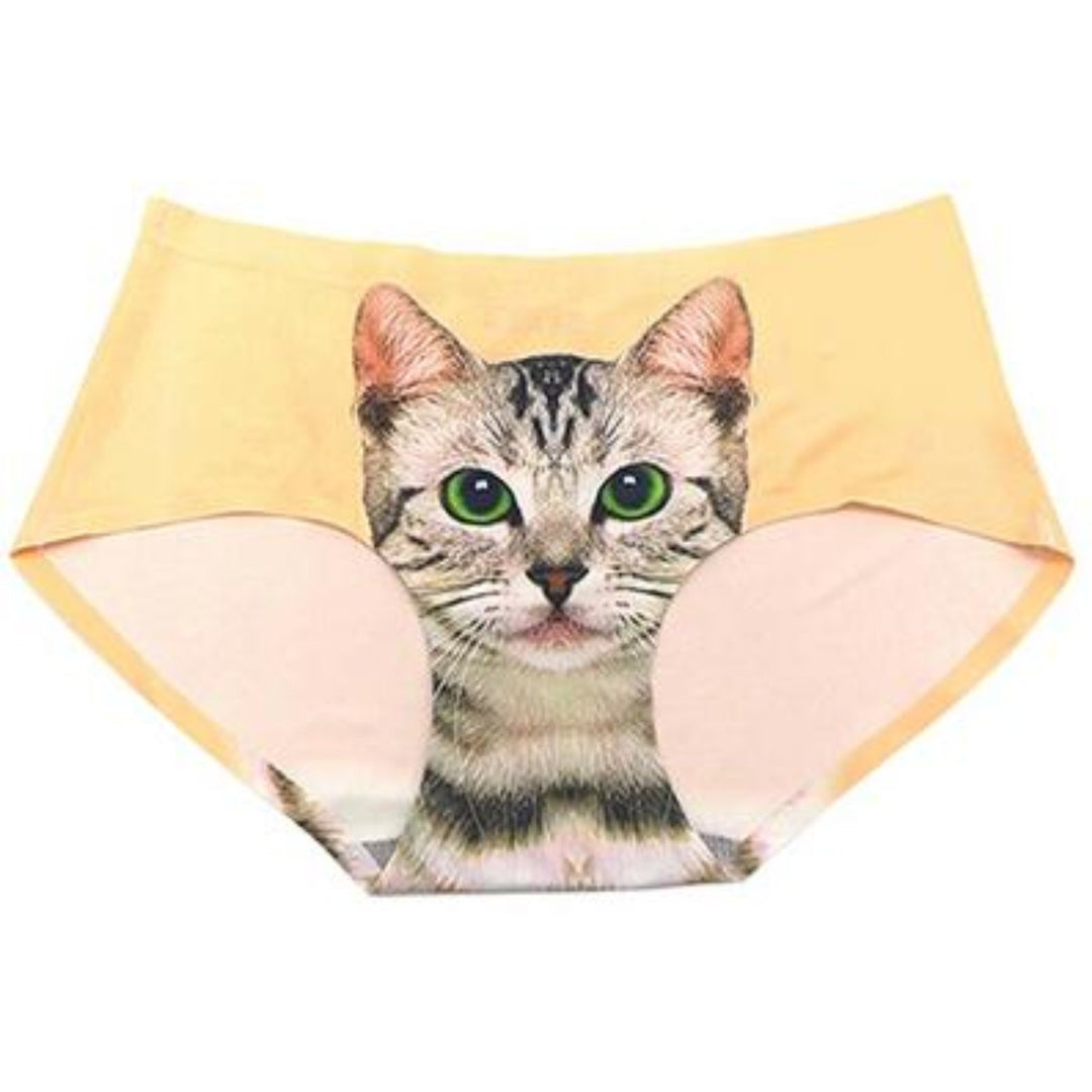 Culotte chat