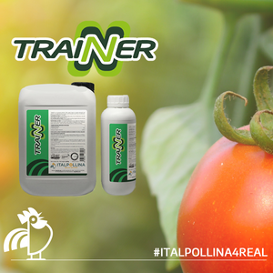 TRAINER on Tomatoes