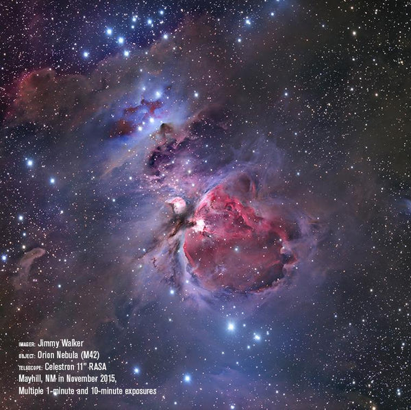 Orion Nebula with RASA 11""