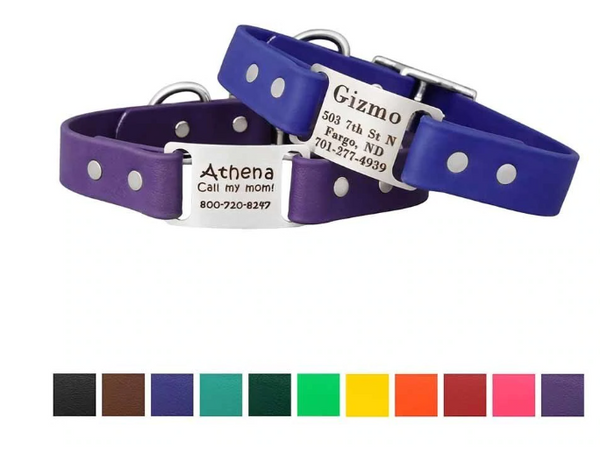 Solid Color ScrufTag Dog Collar