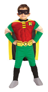 Robin Child Deluxe Toddler Costume 2T-4T