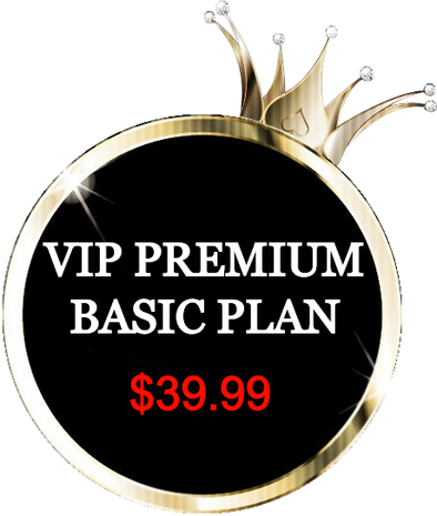 VIP Ultimate Plan