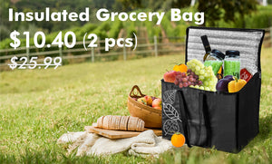 Product Review - Insulated Grocery Bag