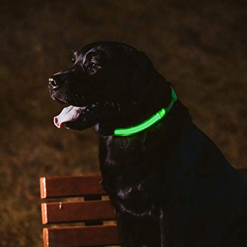 Matchy2u Rechargeable Led Dog Collar - Light up Safety and Waterproof