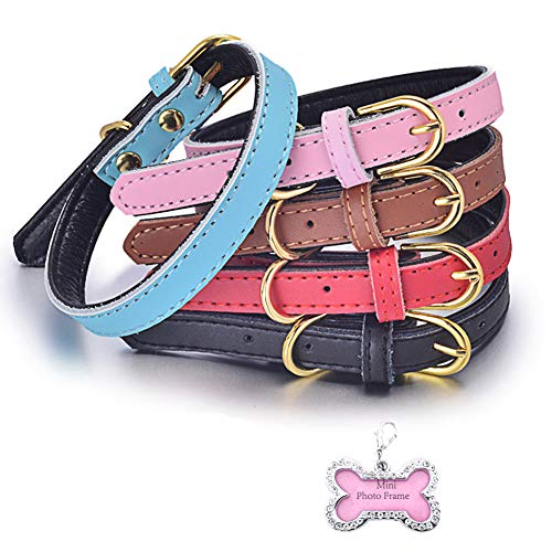 Matchy2u Cute Classic Leather Pet Dog Collars for Small Medium Large Dogs Cats Basic Adjustable Soft Stylish Solid Color Pet Collars