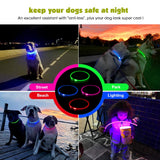 LED Dog Collar, USB Rechargeable Flashing Light Up Collar for Safety at Night, Adjustable Water Resistant Bright Lighted Collar for Small Medium Large Dogs