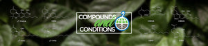 Compounds and Conditions: What works?
