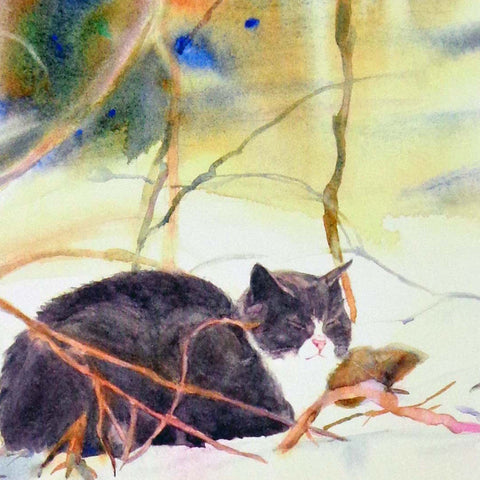 Sleepy Gray Cat in Snow, blank greeting card