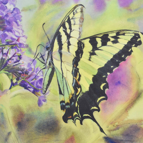 Tiger Swallowtail, blank greeting card