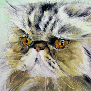 Sophie is Thinking (Persian cat), blank greeting card