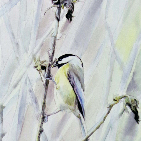 The Chickadee is Foraging, blank greeting card