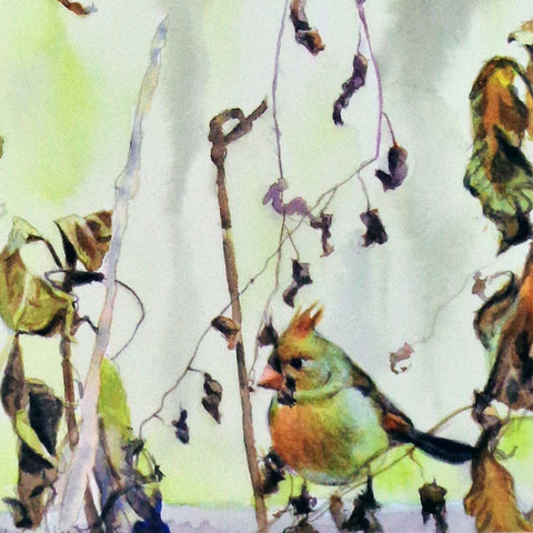 Mrs. Cardinal in the Brush, blank greeting card