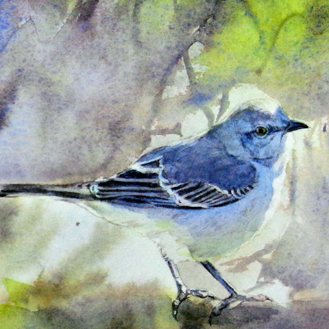 Mocking Bird in Morning Mist, blank greeting card