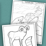 Stephanie Weinger: Animals Everywhere; Critters of the United States, coloring book