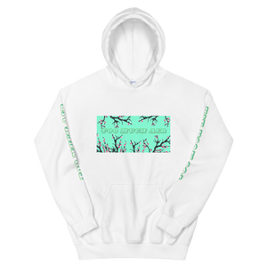 TO MUCH AIR ARIZONA AESTHETIC HOODIE