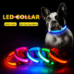 USB Charging Led Dog and Collar