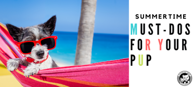 Summer Must Do's for Your Pup - In Pups We Trust
