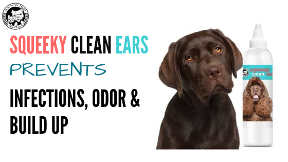 Squeaky Clean Ears