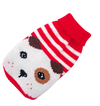 Red Teddy Dog Sweater