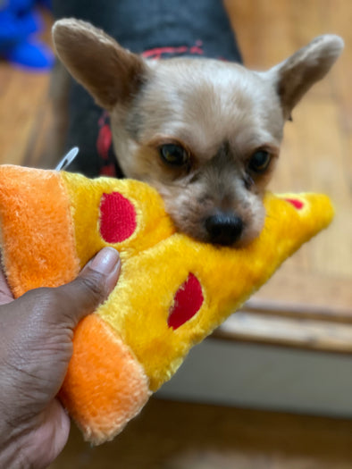 Dog Pizza Slice Toy