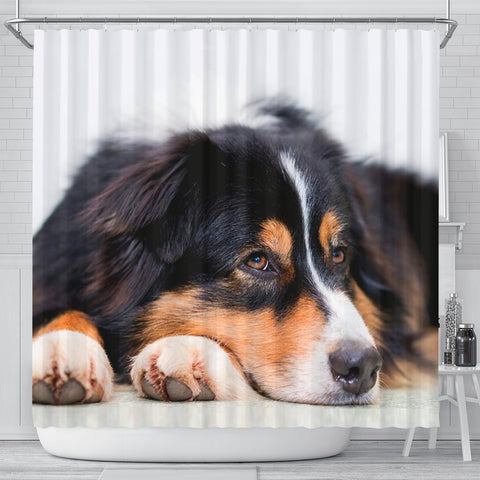 Australian Shepherd Dog Print Shower Curtains-Free Shipping