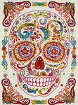 "Boy and Girl Bedroom Modern Decor Area Rug and Carpet Collection For Kids and Children Rainbow Happy Sugar Skull (3' 11"" x 5' 3"")"