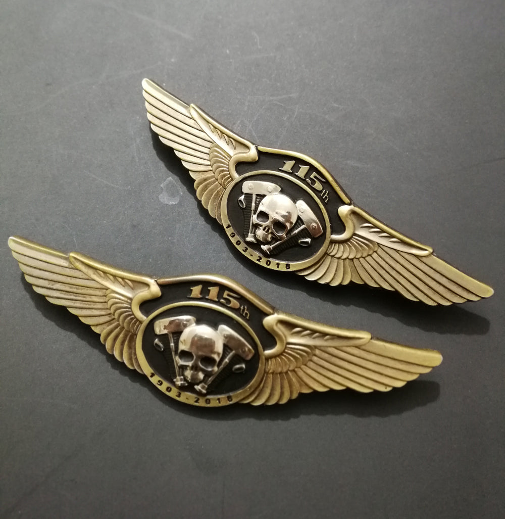 NEWEST MOTORCYCLE SKULL WINGS PINS BADGES BROOCHES FOR  BIKER JACKET VEST SHOES BAG BELT GARMENT BROOCHES PINS HAT PINS BUCKLE