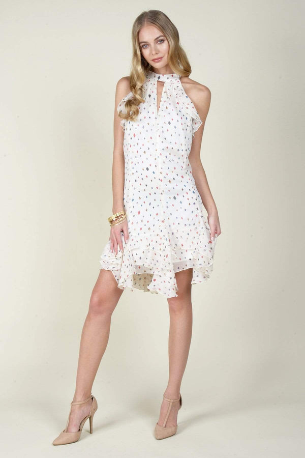 Eva Franco Dress Greda Chiffon  Dress - Funfetti Print